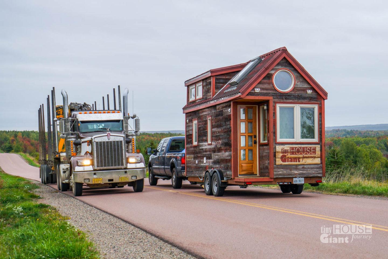 Nova Scotia: Off-Grid Jungle & Ninja Moose
