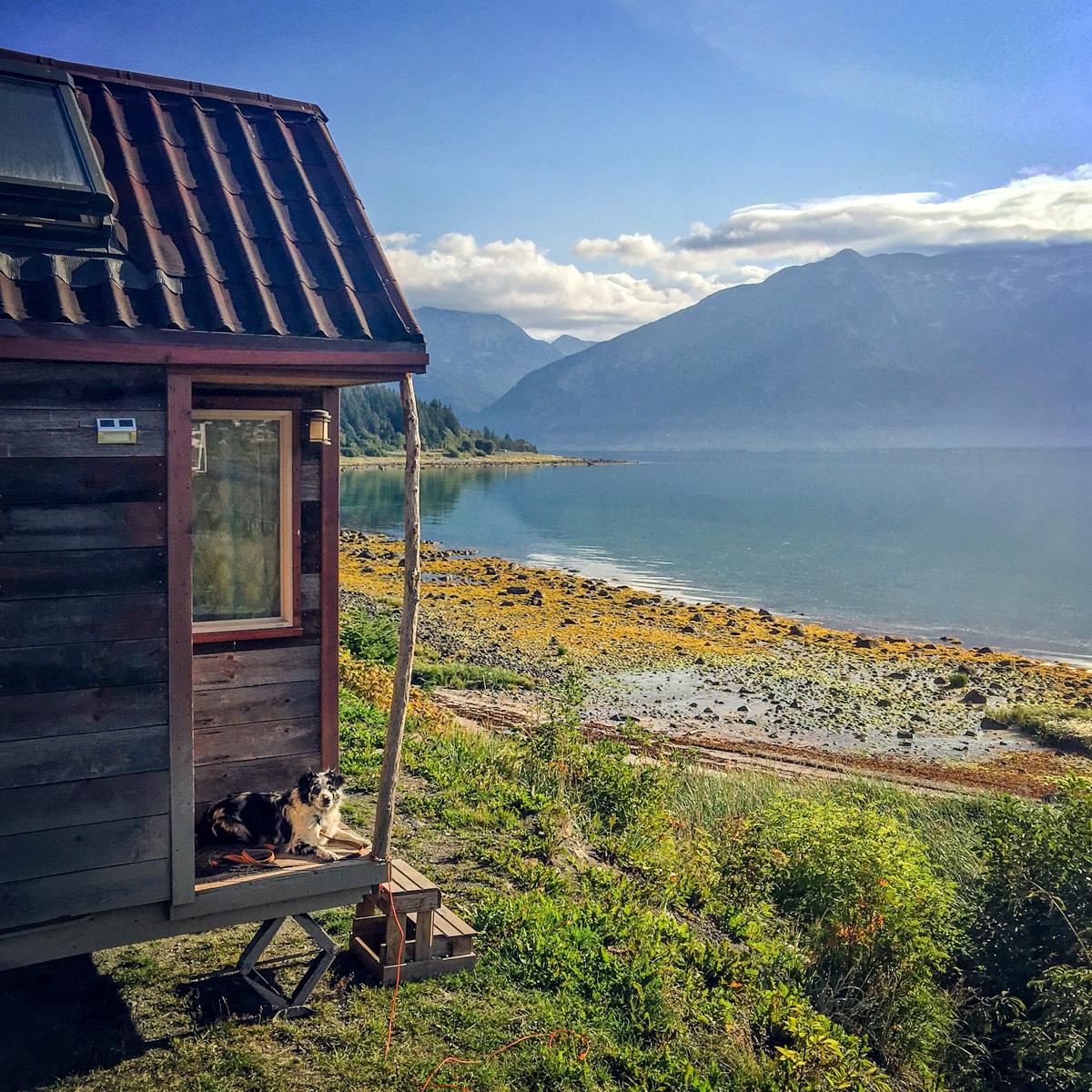 Haines, AK: Speedy the Bear & a Hammer Museum