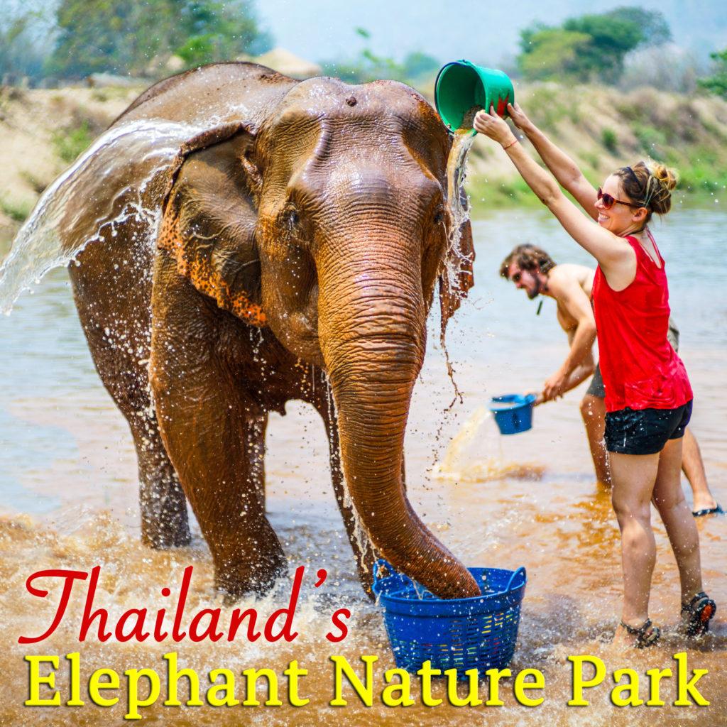 Thailand Elephant Nature Park