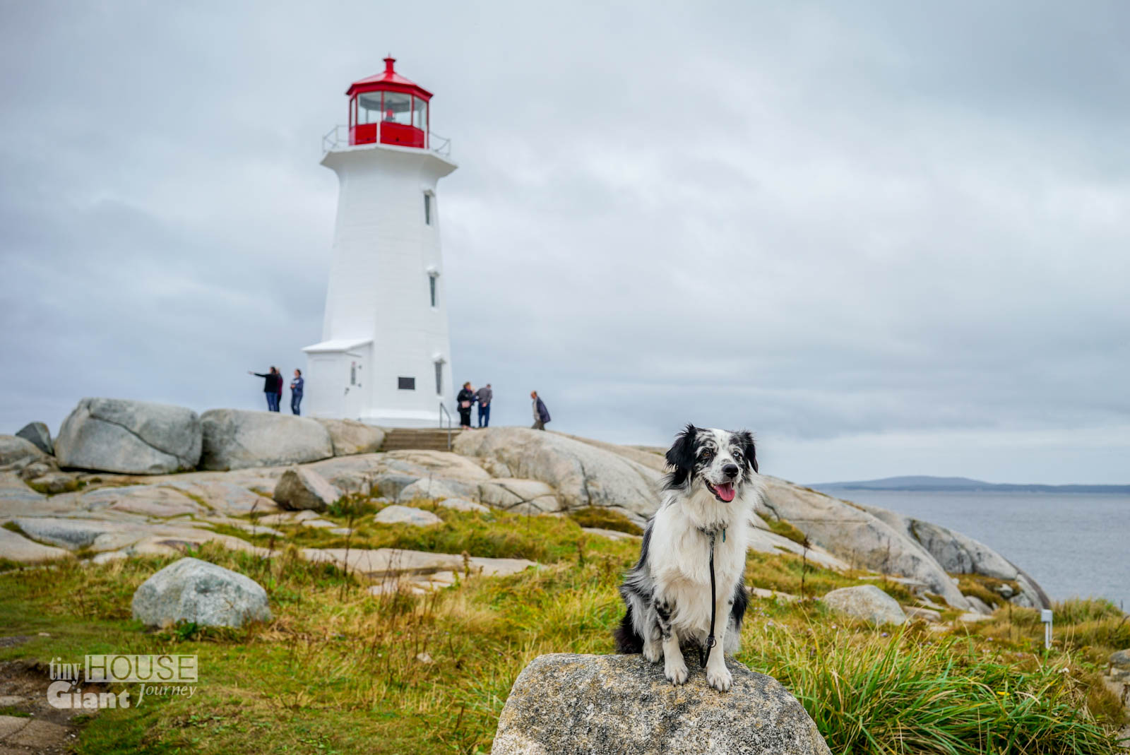 THGJ Peggy's Cove