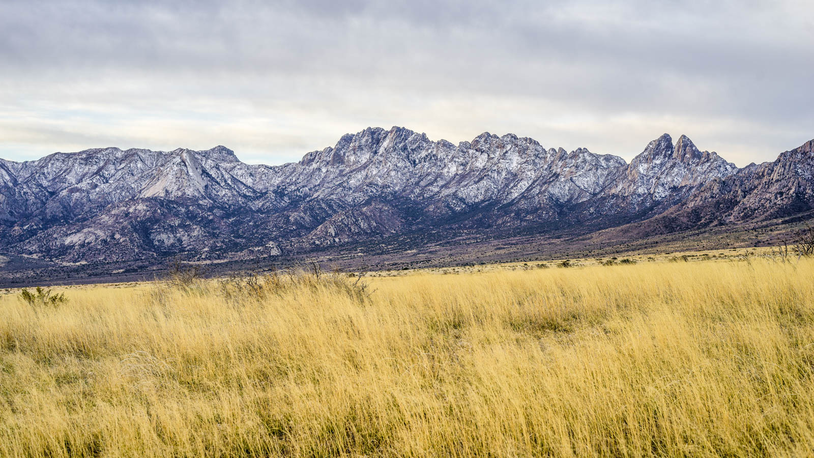 Organ Mountains - 0001