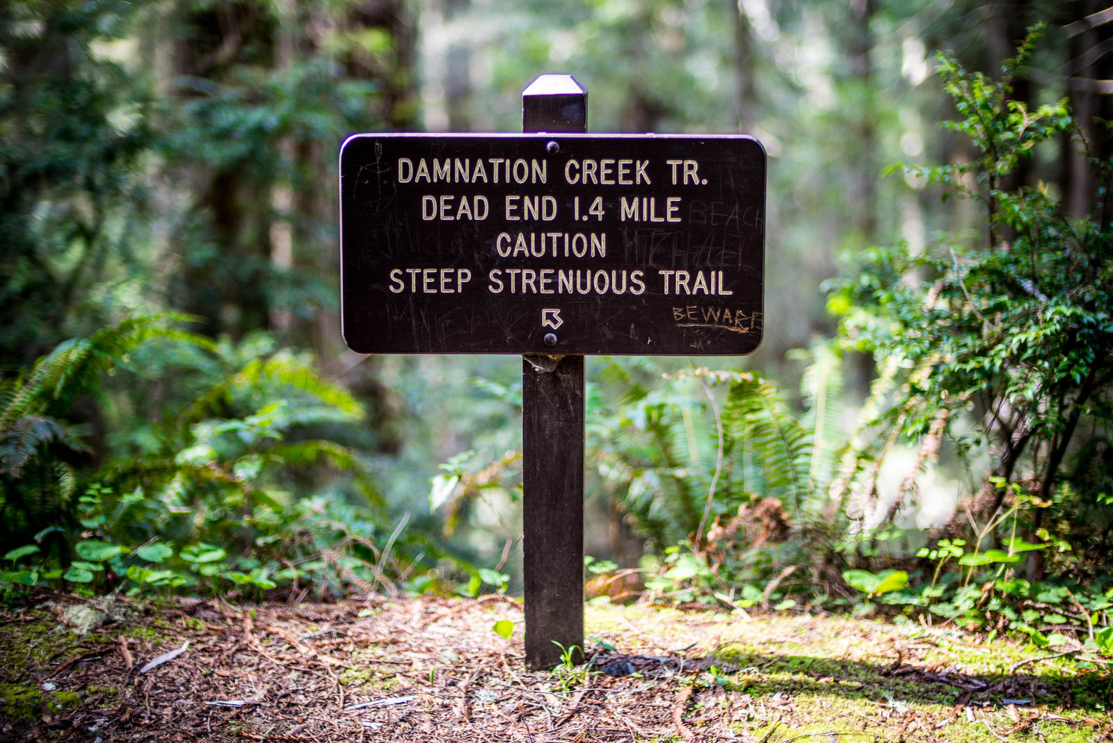 Damnation Creek Trail Hike - 0001