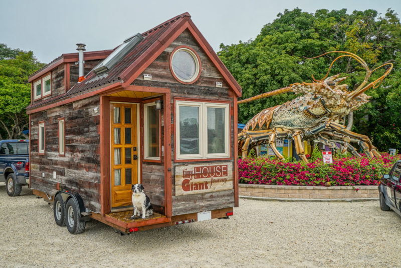 THGJ and the largest lobster in Islamorada - Tiny House Giant Journey