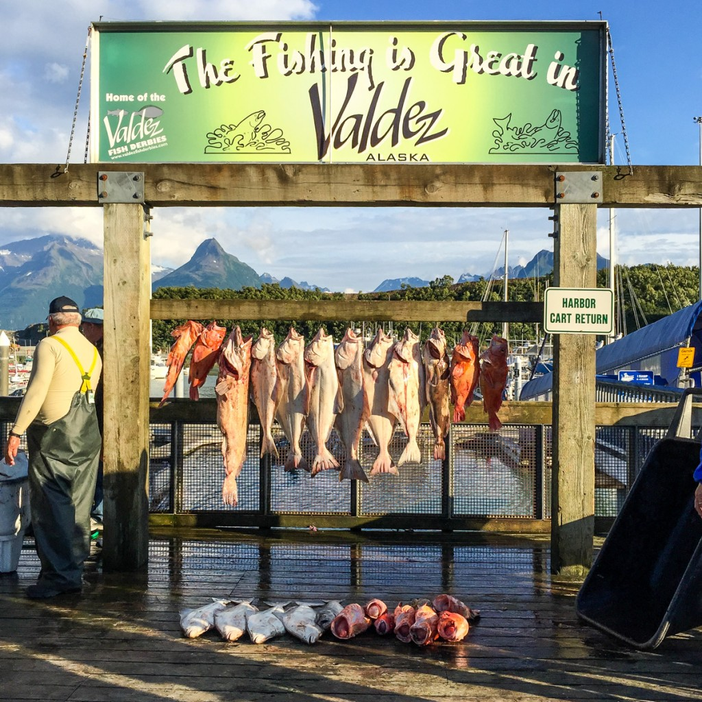Valdez Fishing - 0003