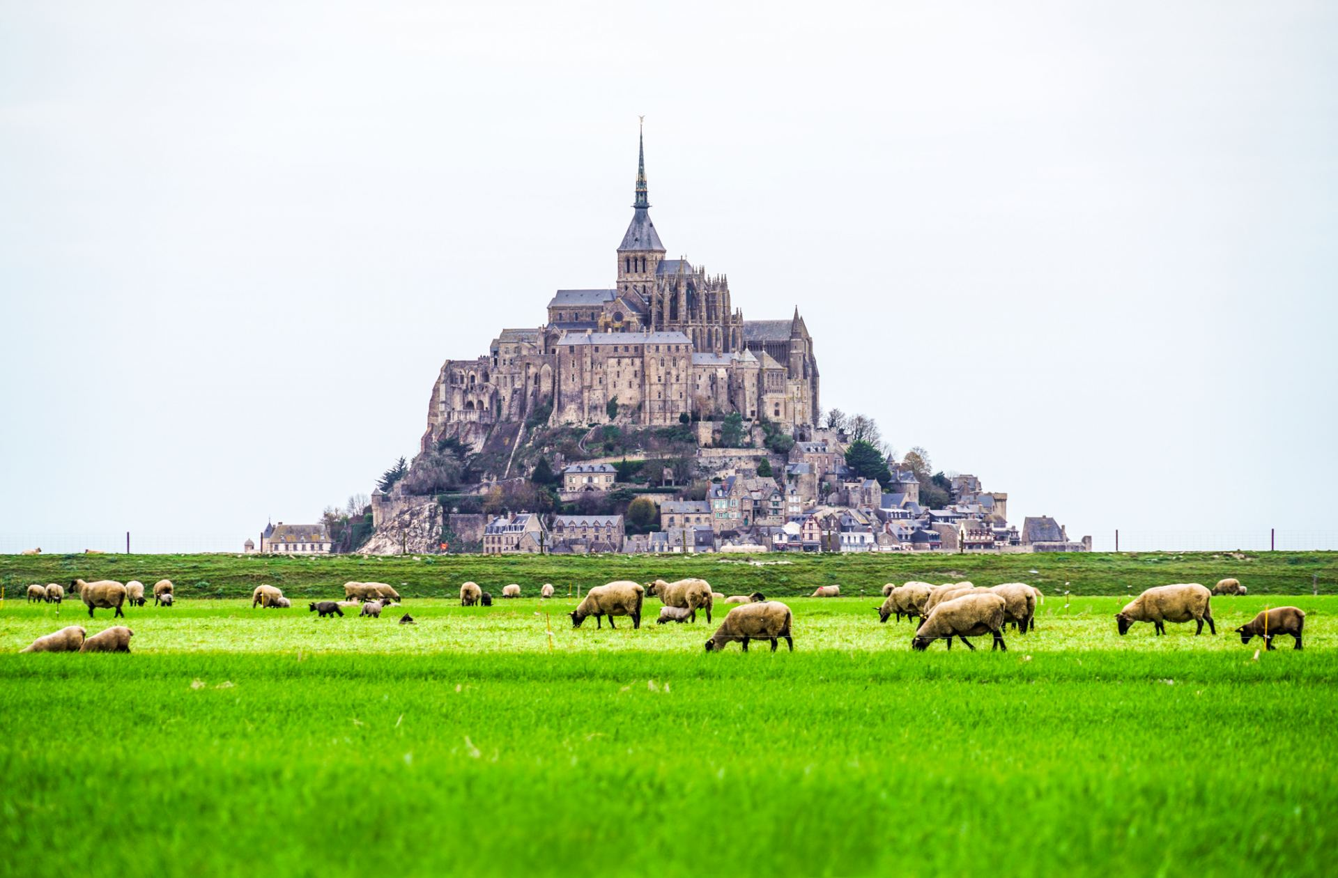 Vintage Interior Design Day Trip To Mont Saint Michel In Normandy France