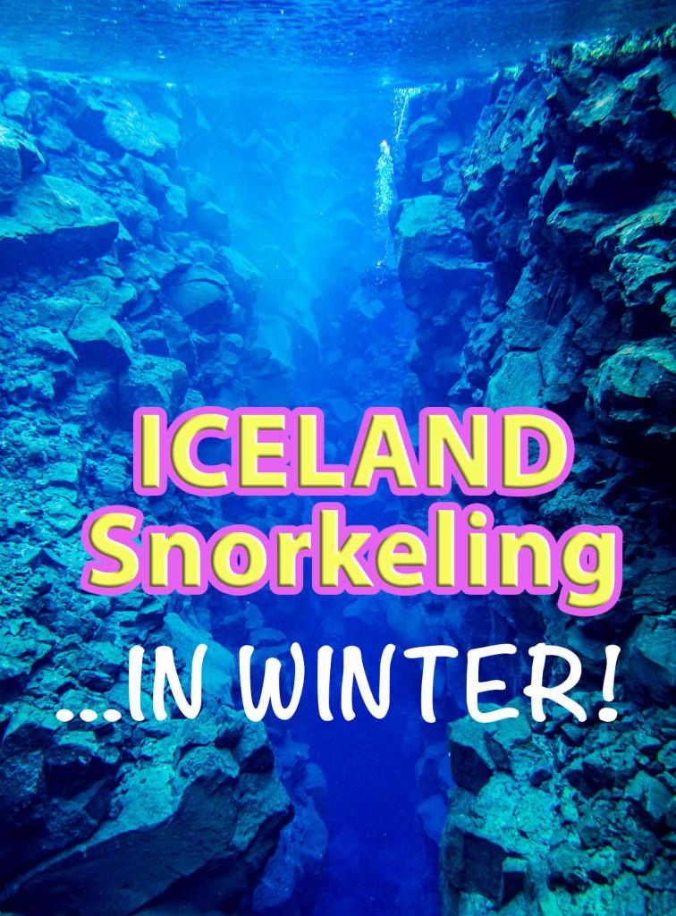 iceland snorkeling
