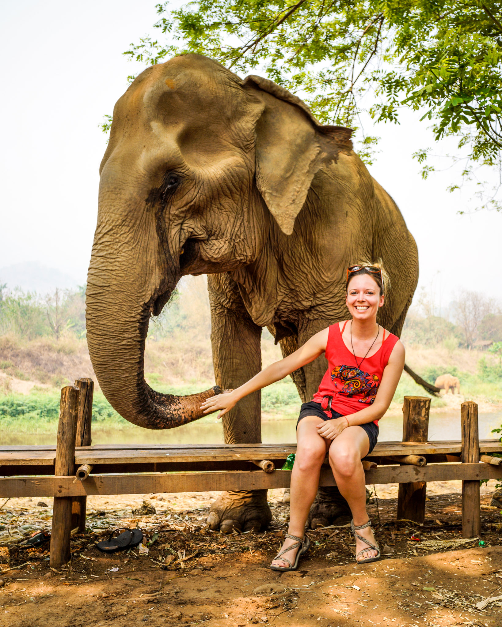 Elephant Nature Park, Thailand. How I celebrated my 30th birthday